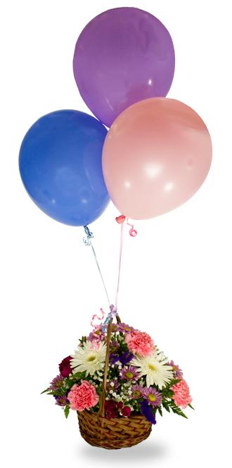 Panier de Ballon  Meilleur Voeux