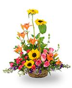 Panier de Fleurs de Jardin Mélangées