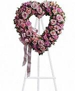 Rose Coeur du Jardin