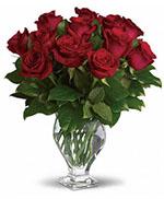 Rose Classique de Teleflora