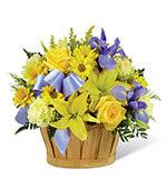 Le petit bouquet bleu de garçon